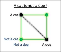dd-catdog